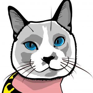 Gato - Arte caricatura